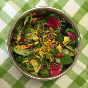 Rosiger Sommersalat